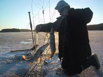 PikeNet Fishing on Lakes