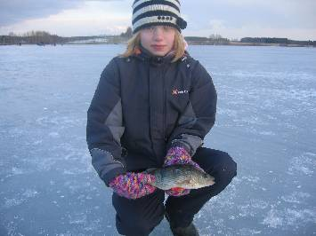 Perch Ice fishing on Lakes
