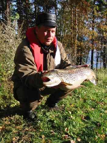 Brown trout Trolling on Lakes